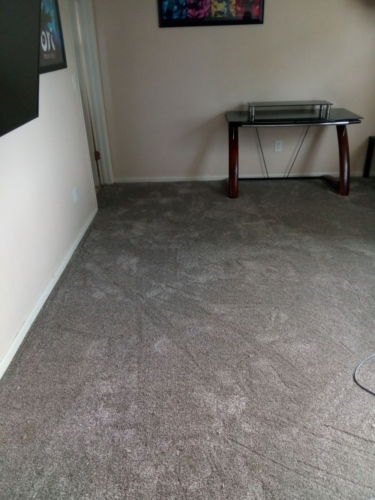 Beige-Bisque-Carpet-Fort-Collins-02