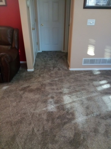 Beige-Bisque-Carpet-Fort-Collins-03