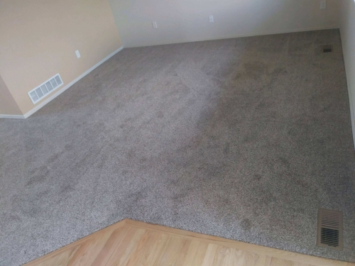 Fort Collins Carpet color is Carmel Coast Tuftex Raft