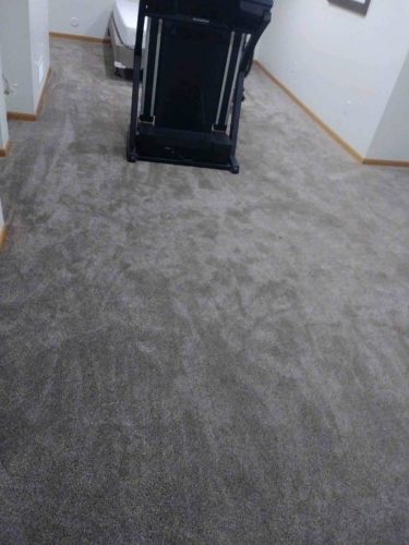 Fort Collins carpet Platinum texture color is Pegasus