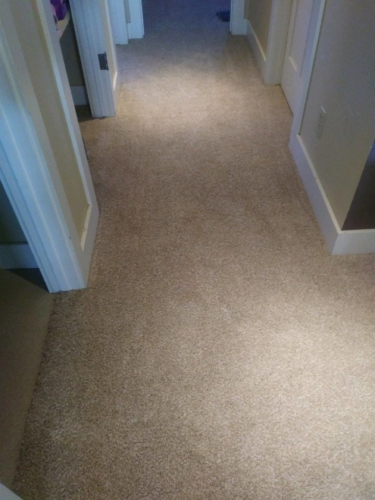 Fort Collins Carpet color Soft Shell