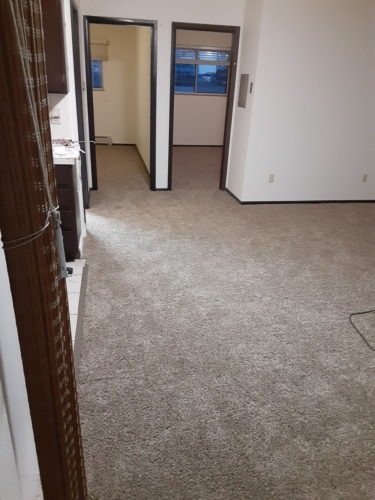 Cobblestone-25oz-Base-Carpet-Fort-Collins-08