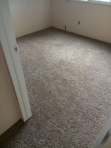Cobblestone-25oz-Base-Carpet-Fort-Collins-09