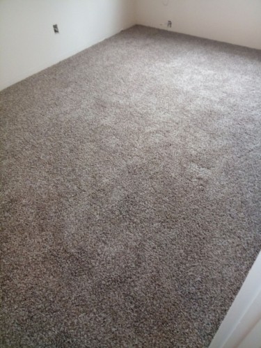 Cobblestone-25oz-Base-Carpet-Fort-Collins-11