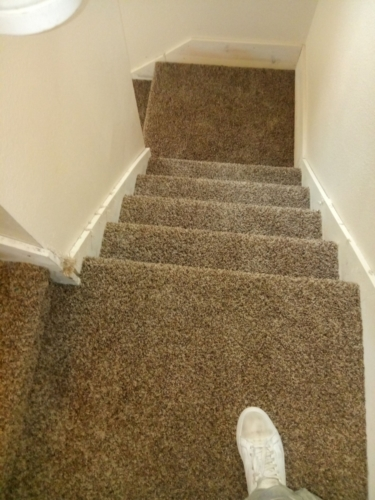 Cobblestone-25oz-Base-Carpet-Fort-Collins-12