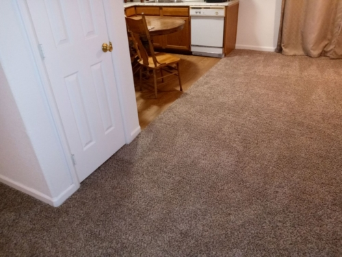 Cobblestone-25oz-Base-Carpet-Fort-Collins-18