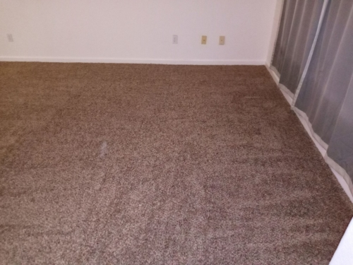 Cobblestone-25oz-Base-Carpet-Fort-Collins-20