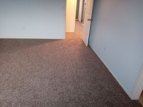 Cobblestone-25oz-Base-Carpet-Fort-Collins-24