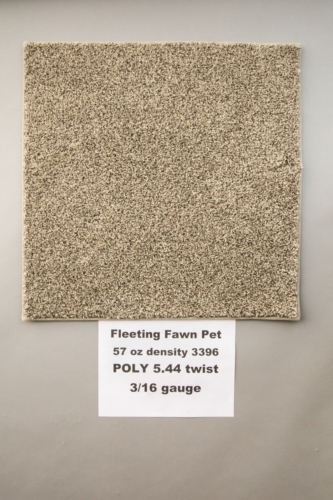 Fleeting-Pawn-Pet-Carpet-Fort-Collins-01