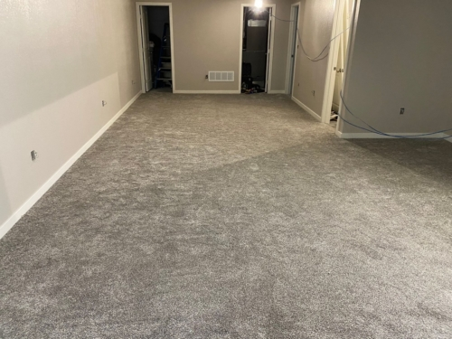 Fleeting-Pawn-Pet-Carpet-Fort-Collins-19