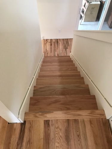 """Fort Collins hardwood refinish """" Amber seal and top knot"""""""