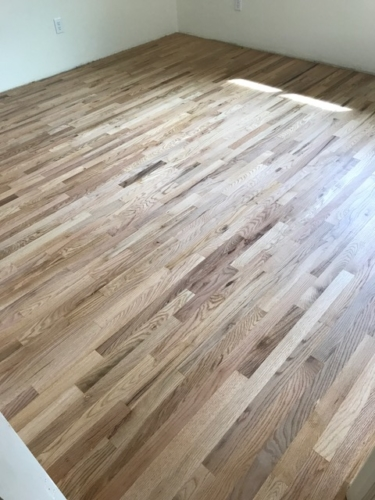 HR26-Fort-Collins-hardwood-refinish-Amber-seal-top-knot-01