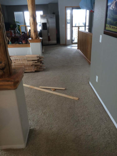 Project11-Hickory_Hardwood_Fort_Collins03