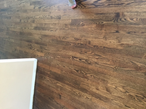 Red Oak Water Popped Stained Jacobean – Fort Collins