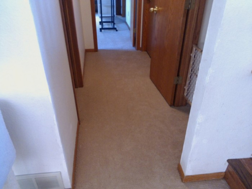 New Carpet Installation – Fort Collins, Colorado